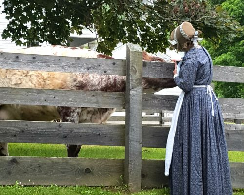 A Farmers' Museum Interpreter comforts Gingersnap in the middle of labor.