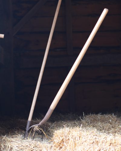 Tools of the 19th century farming trade.