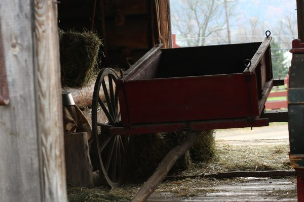 Ox cart used for pulling heavy loads with our oxen team.